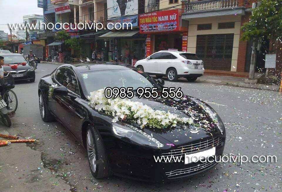 thuê xe cưới Aston Martin rapide màu xanh đen